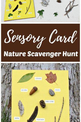 Nature Scavenger Hunt with Sensory Card