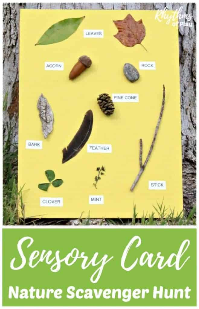 Create a nature scavenger hunt for your kids by making a nature sensory card. Using a nature sensory card makes it possible for toddlers and young children that can't read to go on a nature hunt. Alternative variations and creative learning ideas to extend this forest school nature study activity are included.