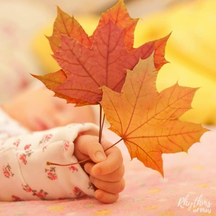 Signs of autumn scavenger hunt for kids - Teach your children about the fall with this fun and educational homeschool science learning activity. Get outside to study nature and the changing seasons by hunting for the signs of fall with the kids!