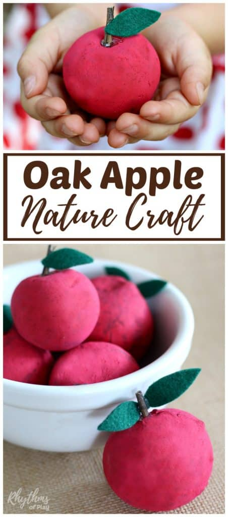 Apple nature craft for kids made out of oak apples!