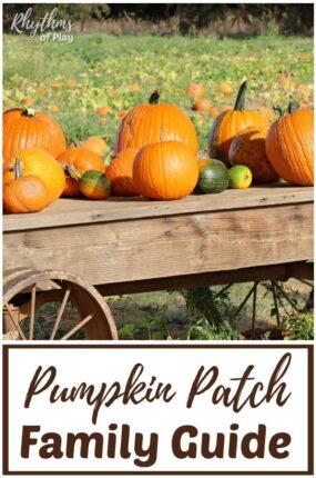 pumpkin patch field trip ideas