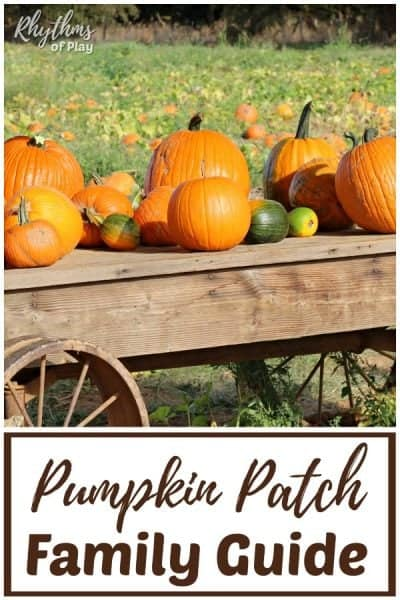 pumpkin patch field trip ideas