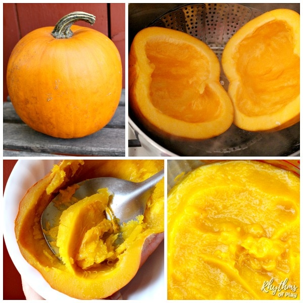 How to make pumpkin puree photo tutorial.