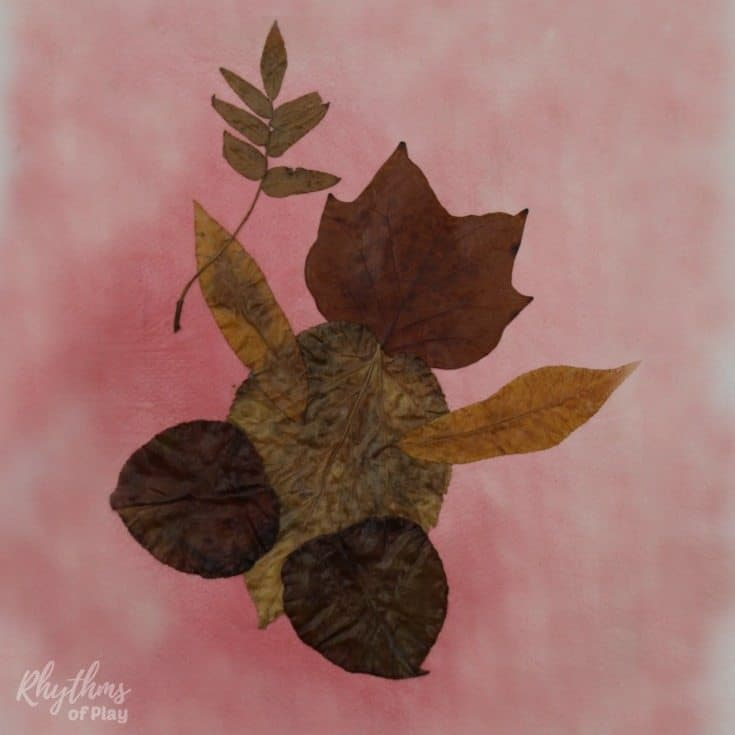 leaf art with real autumn leaves made into the shape of a baby