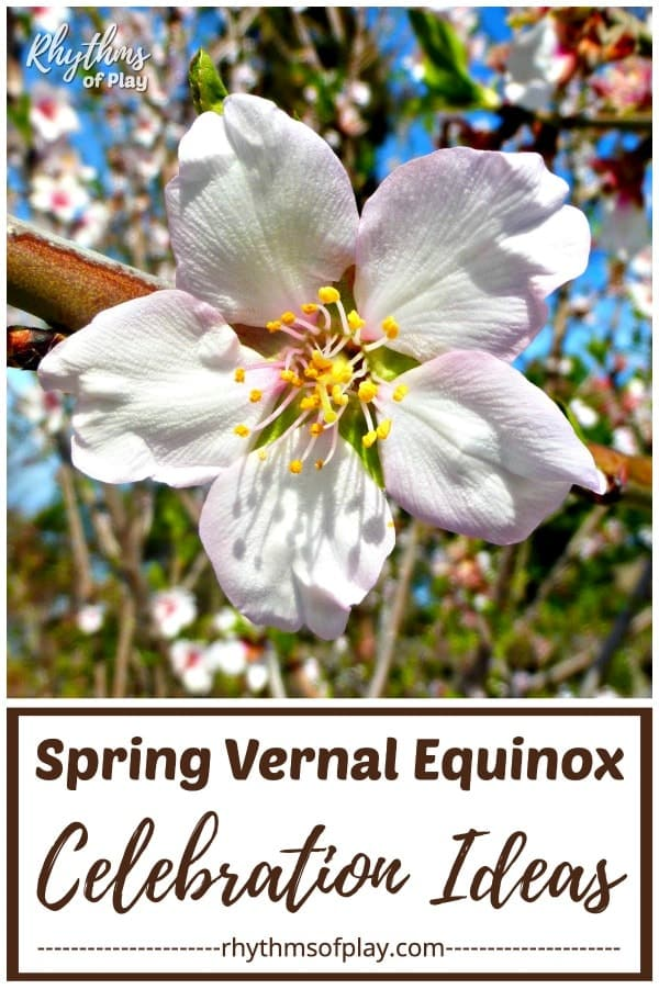 Ways to celebrate the spring equinox