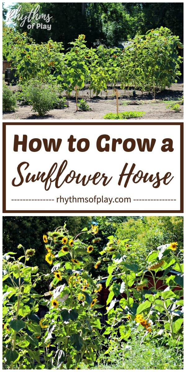 outdoor playhouse DIY sunflower house or fort