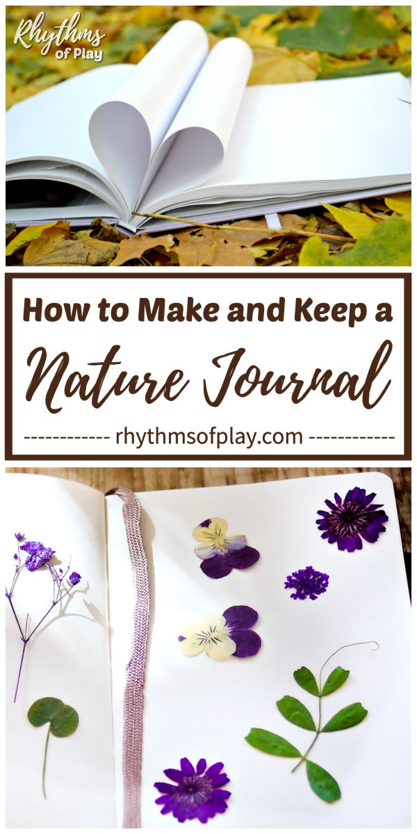 nature journal with nature specimens and flowers placed inside of it