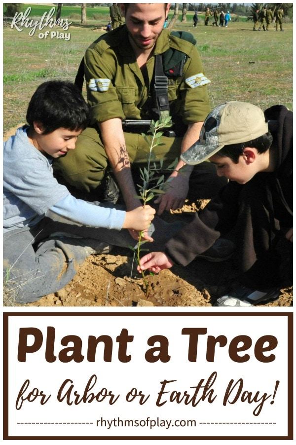 planting a tree gardening tips