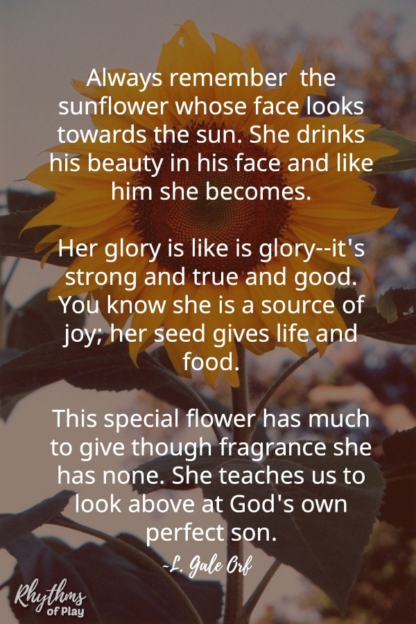sunflower poem