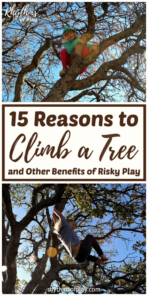 climb a tree - benefits of tree climbing for kids