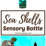 seashell soothing sea shells sensory bottle calm down jar