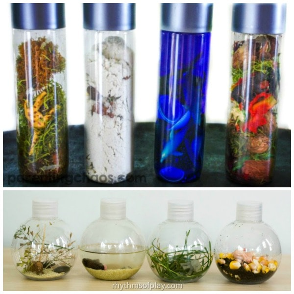 Nature-Inspired Sensory Bottle Biomes