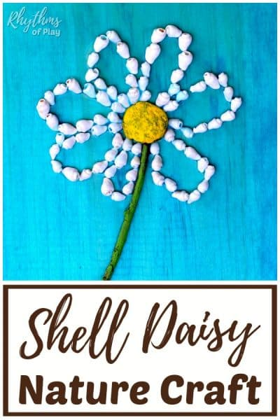 daisy flower shell crafts for kids and adults