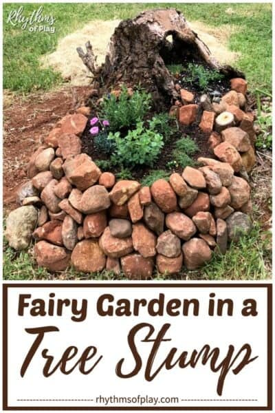 fairy garden tree stump diy backyard project