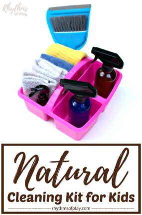 All natural cleaning kit supplies