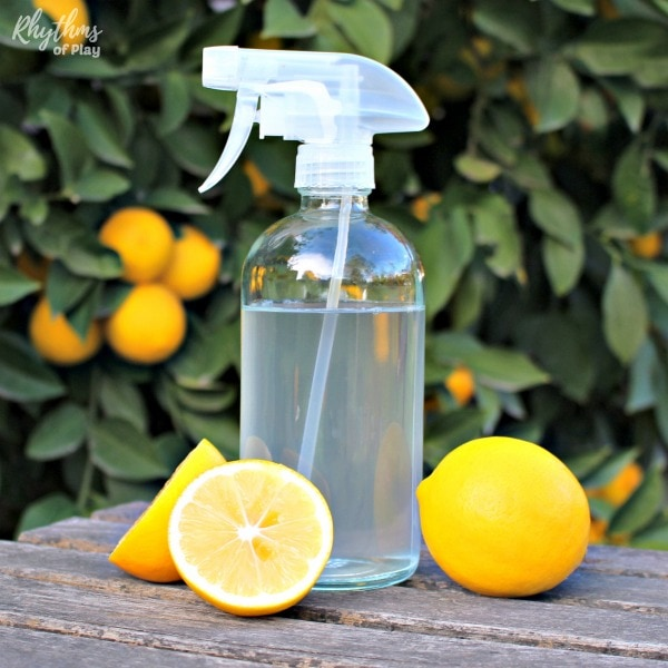 DIY glass cleaner in clear bottle on a table with lemons