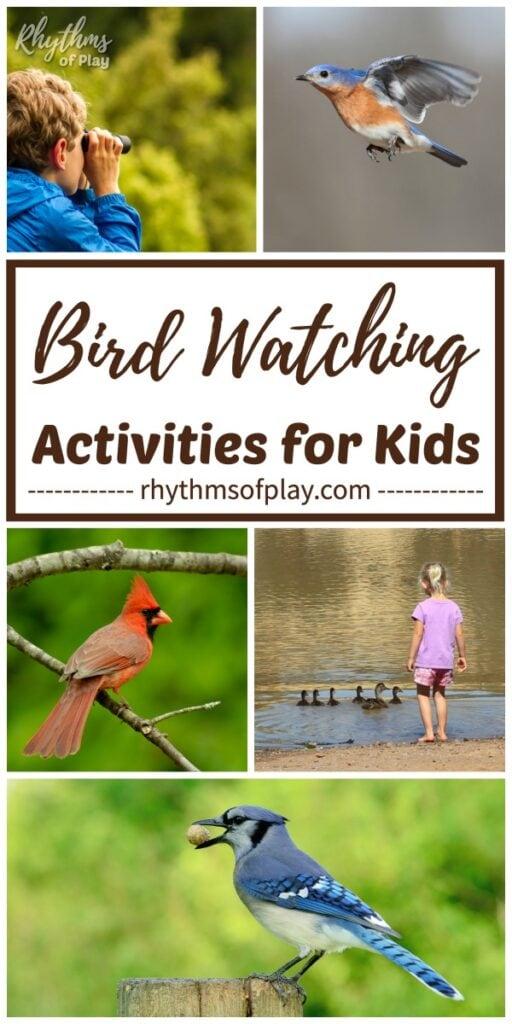 Birding for kids - photos of children bird watching different species of birds