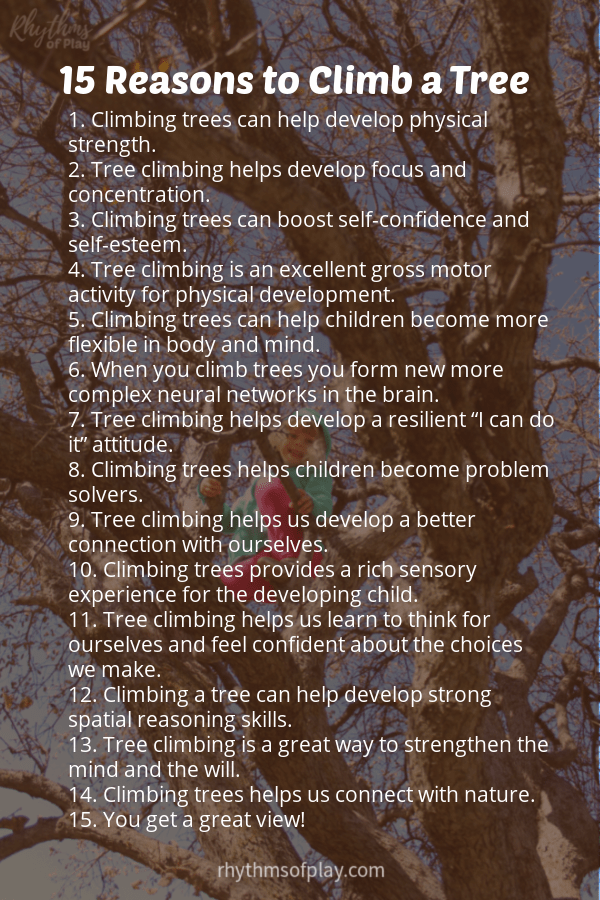 """List of """"15 Reasons to Climb a Tree"""" with a child climbing a tree in the background."""