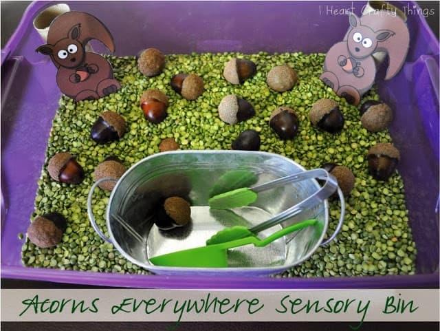 "Acorns everywhere squirrel sensory bin by ""I heart crafty things"""