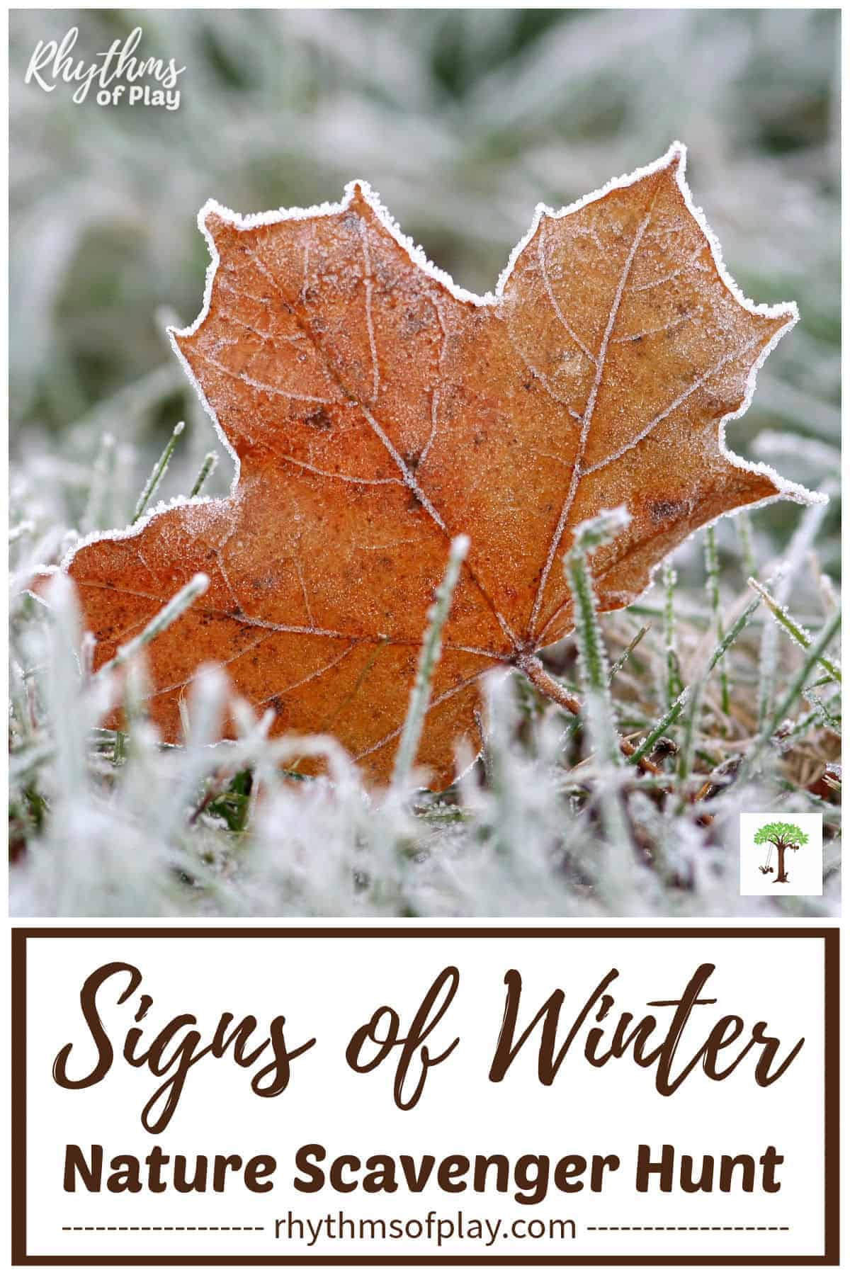 fall leaf with frost is a sign of winter in this nature scavenger hung for kids