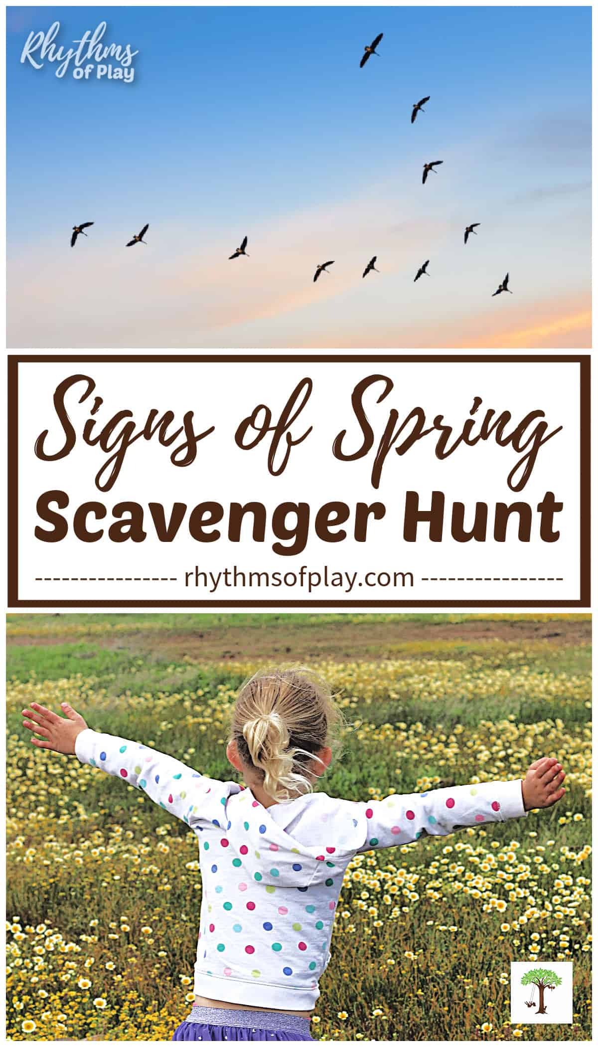signs of spring scavenger hunt - migrating birds and flowers